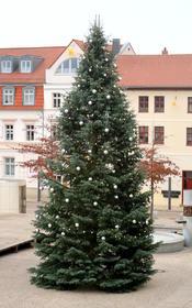 Der Sternenmarktbaum 2016 kam aus Flechtingen