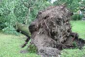 Sturmschäden 22 Juni 2017