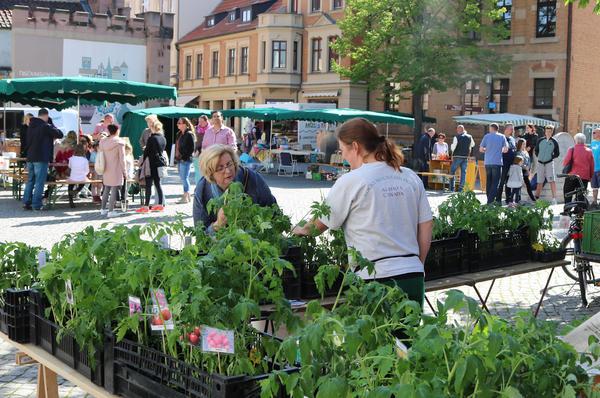 Der Regionalmarkt auf dem Hagentorplatz beim Saisonauftakt im Mai